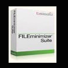 fileminimizer suit at itassetmanagement.in